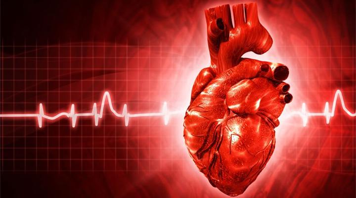 cardiaca